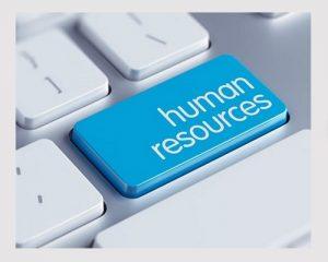 منابع انسانی در شرکت پخش