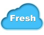 شرکت پخش مویرگی fresh